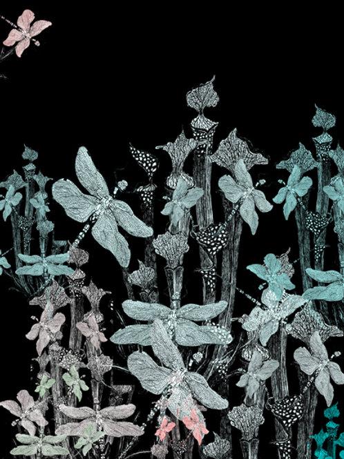 cordalie exultant lusibus
