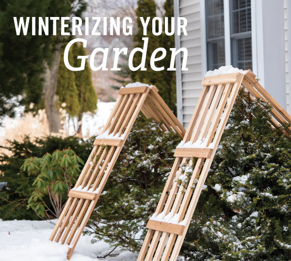 From the Gardener's Journal: (gardeners.com) Winterizing Your Garden