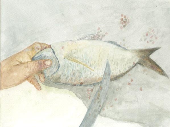 Fish Scaling, 2015
