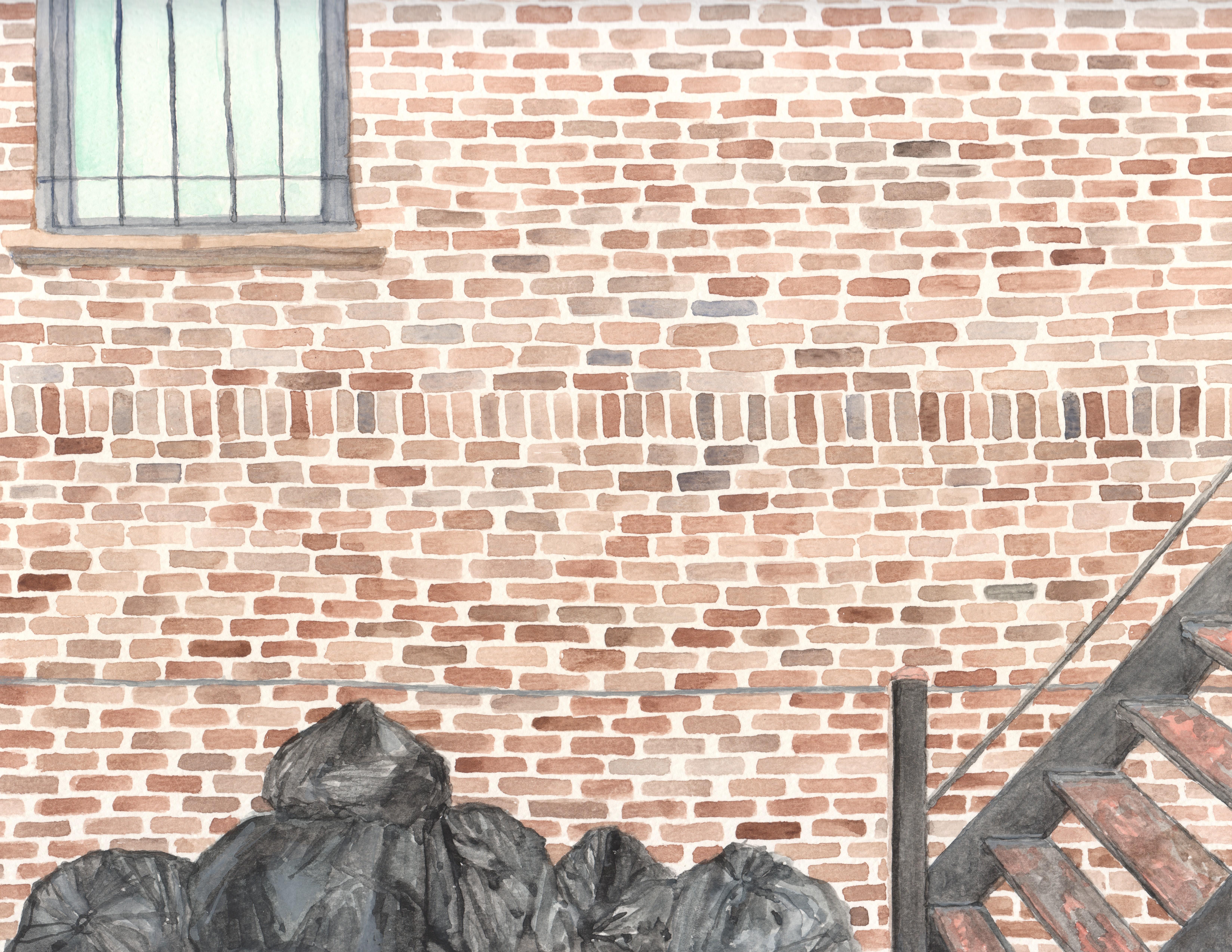 Park Slope Trash, 2016