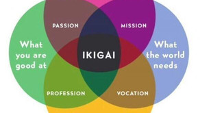Ikigai: Your Reason for Being