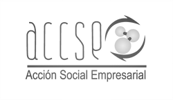 Logo+ACCSE_edited.png