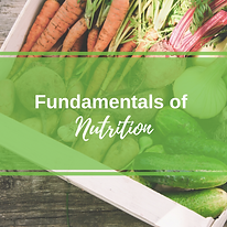 Fundamentals of Nutrition-2.png