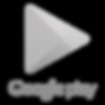 Google-Play-Store-logo copy.png