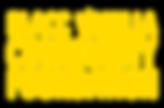 BVCF Logo.png