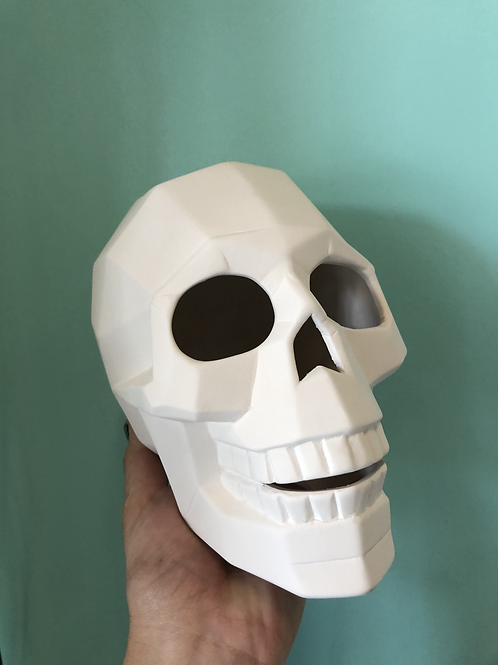 Faceted Skull Take Home Kit