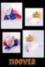Collage+2019-10-23+23_48_56.jpg