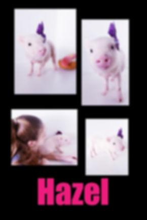 Collage 2019-06-29 00_41_21.jpg