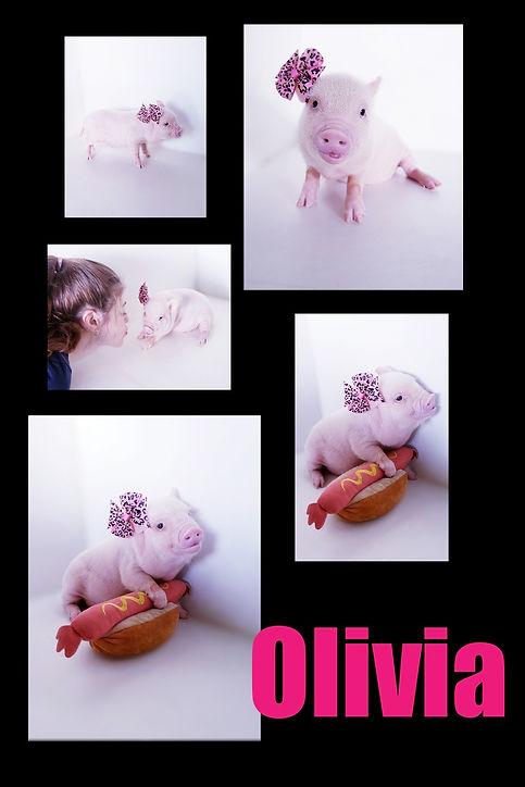 Collage 2019-06-29 00_42_29.jpg