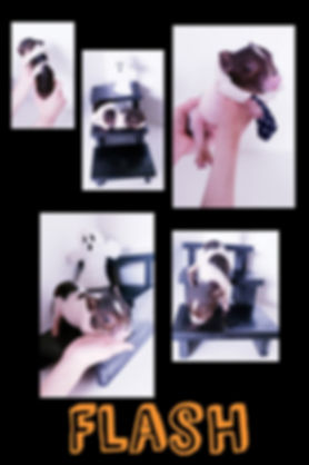 Collage+2019-10-23+23_39_30.jpg