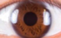 iridologie boris jean naturoathe