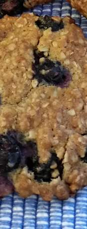 Blueberry Lemon Oatmeal with Walnuts Cookies