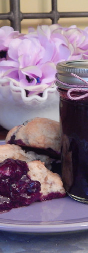 Blueberry Scone with Blueberry Jam