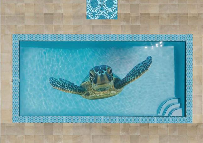 27_Turtle-Pool-Design.jpg