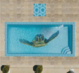 Turtle Pool Design