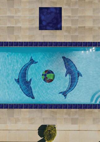 26_Dolphin-Pool-Concept.jpg