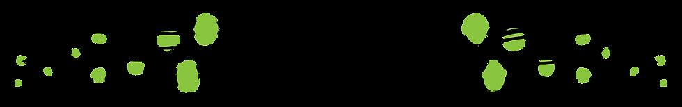 WEBSITES STRIP-01.png