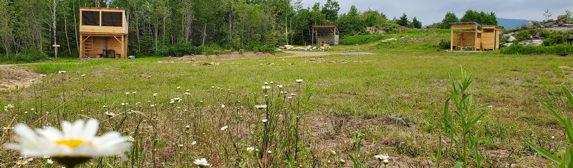 Camping Tendaro, Quebec