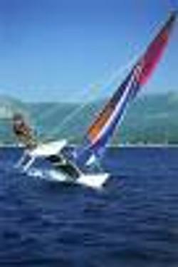 cat segeln