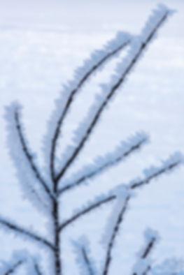 ICE BRANCHE VERTICAL COMPACTADA ASSINADA