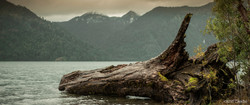 Lake Log