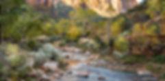 Galeria Cavallini Quadros Natureza paisagem Villa Lobos Shopping Landscape fineart fineart