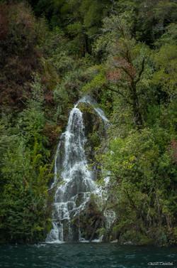 Atlantic Jungle Waterfall
