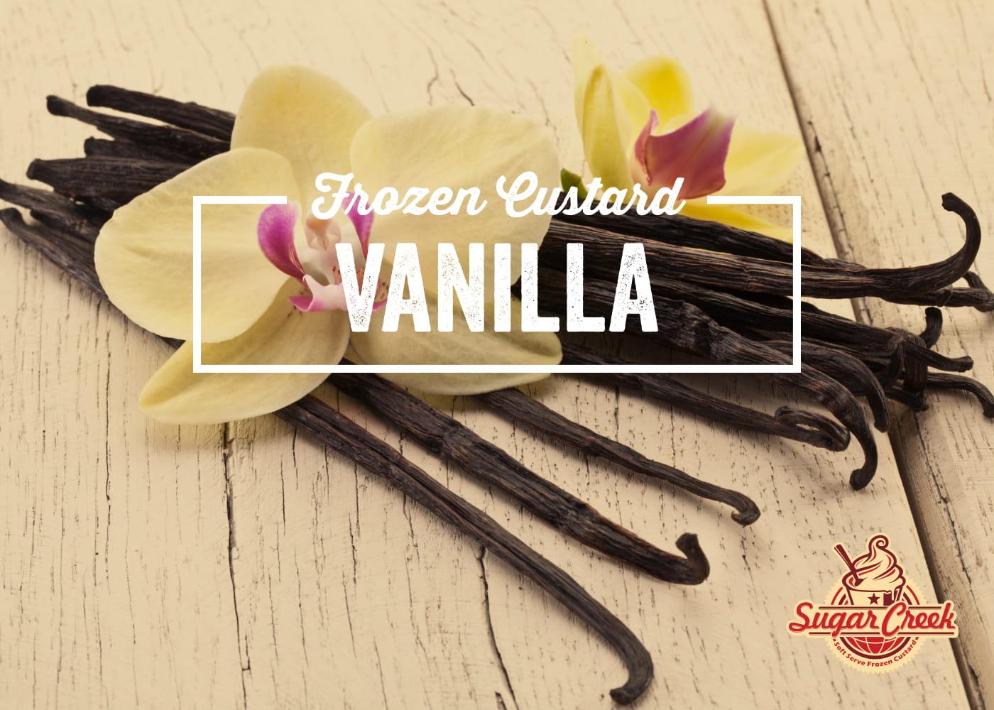 Custard - Vanilla-1.jpg