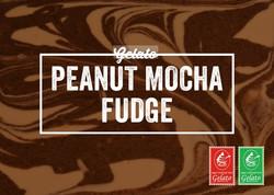 Gelato Twist - Peanut Mocha Fudge.jpg