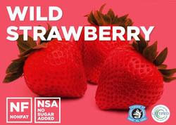 wild-strawberry.jpg