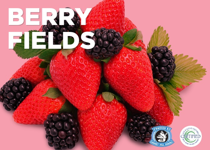 berry-fields.jpg
