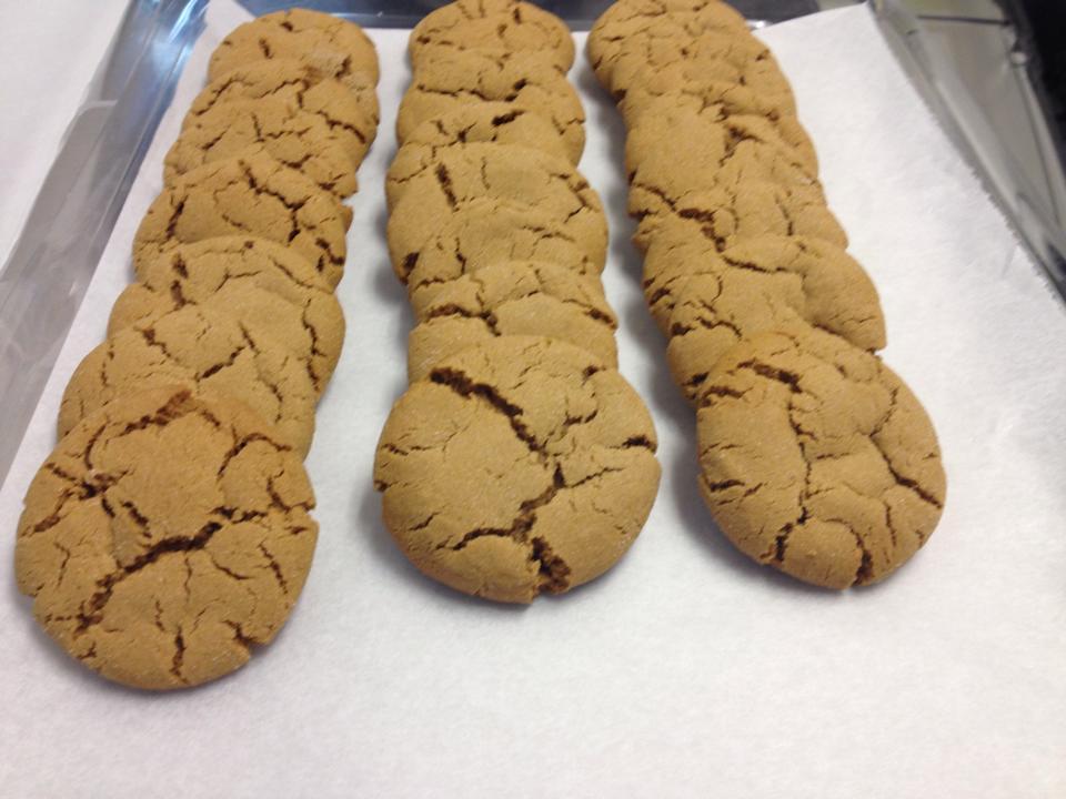 Ginger Snap Cookies.jpg