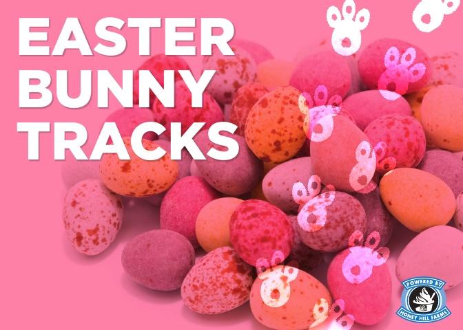 easter-bunny-tracks.jpg