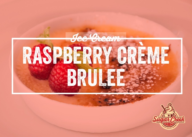 Ice Cream Twist - Raspberry Creme Brulee