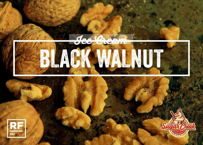 Ice Cream - Black Walnut.jpg