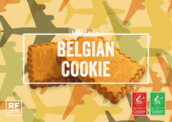 Gelato - Belgian Cookie - Copy.jpg