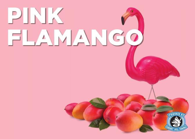 pink-flamango.jpg