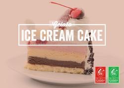 Gelato Twist - Ice Cream Cake.jpg
