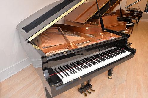 Essex Grand Piano model  EGP173