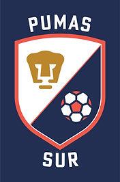 Logo Escuela Pumas Sur
