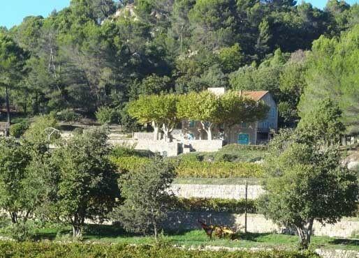 Имение и виноградник на продажу в Провансе, Франция