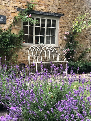 Cotswolds Cottage bench lavendar