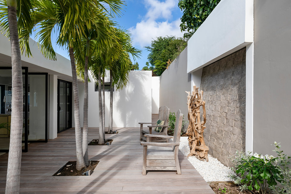 Private Residence St Barth's Entry palm trees courtyard