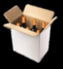 caja de 6 unidades dorada2.png