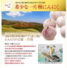 kurohime_06.jpg