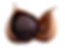 一片種黒にんにく.png