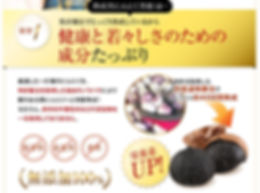 kurohime_04.jpg