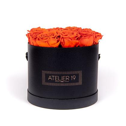 15 Roses Eternelles Orange Vibrant - Box Ronde Noire XL