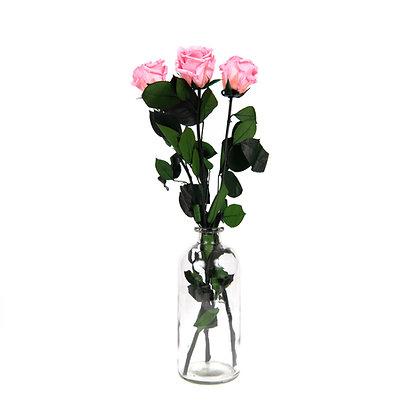3 Roses Eternelles sur tige - Rose Tendre