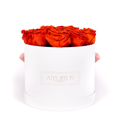 15 Roses Eternelles Orange Vibrant - Box Ronde Blanche XL